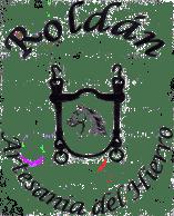 temelestudionet-logo-1445494471